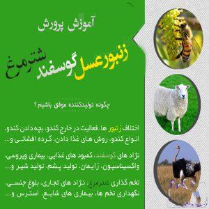 توضيحات بسته جامع پرورش زنبورعسل، گوسفند و شترمرغ /اورجینال
